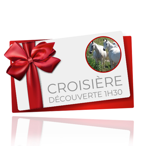 bon cadeau croisière découverte 1h30