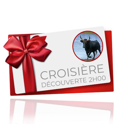 bon cadeau Croisière découverte 2h
