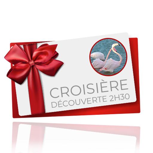 bon cadeau croisière découverte 2h30
